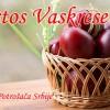 Hristos Vaskrese!